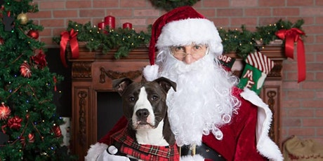 Santa Paws at Macy's tickets