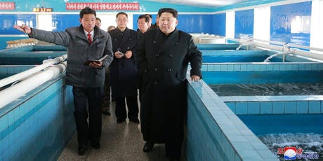 Bad catch: Fish and fishing in North Korea tickets