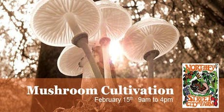 Mushroom Cultivation tickets