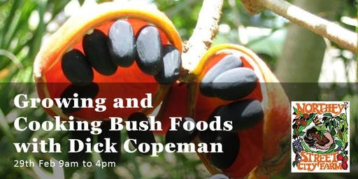 Growing and Cooking Bush Foods with Dick Copeman