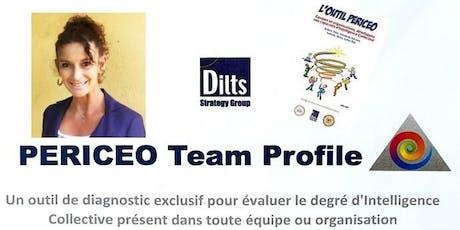 La différence qui fait LA Différence : le Team Profile PERICEO  billets