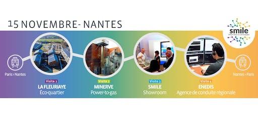 Smartgrids : intégration des énergies renouvelables et flexibilité