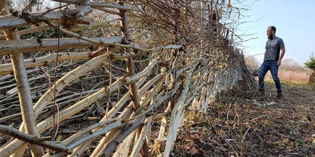 Hedgelaying (Beginners) tickets