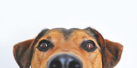 Conosci il tuo cane? Seminario-conferenza sul comportamento canino biglietti