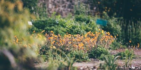 Garden Design: First Steps Course / Cwrs Cynllunio'r Ardd: Camau Cyntaf tickets