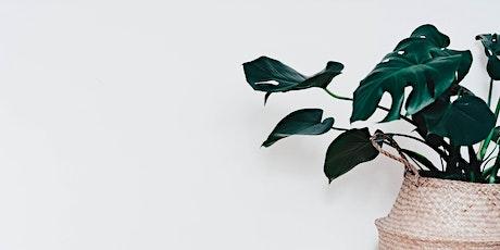 Houseplants Course / Cwrs Planhigion Tŷ tickets