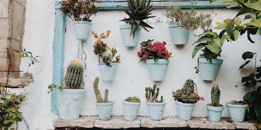 Garden Design: Small Spaces Course / Cwrs Cynllunio'r Ardd: Mannau Bach