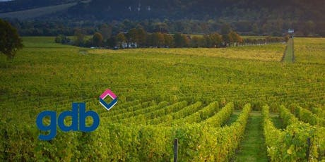 gdb Networking at Ease at Denbies Wine Estate tickets