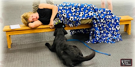 Introduction to Service Dog Training tickets