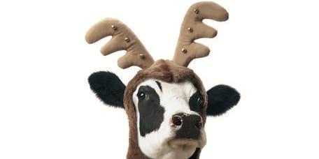 Christmas with Santa Cow