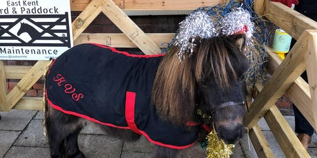 Rupert the Christmas Pony - Faversham tickets