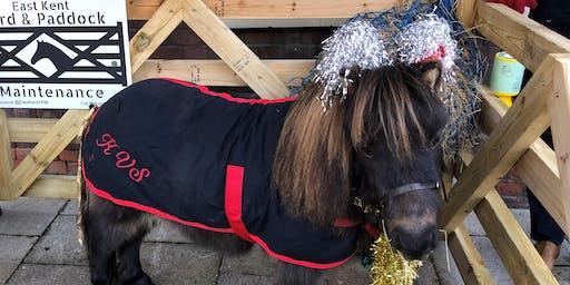 Rupert the Christmas Pony - Faversham