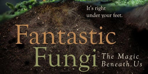 Fantastic Fungi- 100 tickets sold at theater's door/opening day!
