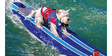 World Dog Surfing Competition: Ball-Fetch-in-Water & Frisbee Registration - 5th Annual billets