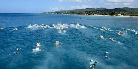 St.Croix Dolphins 16th Annual Sea Swim  tickets