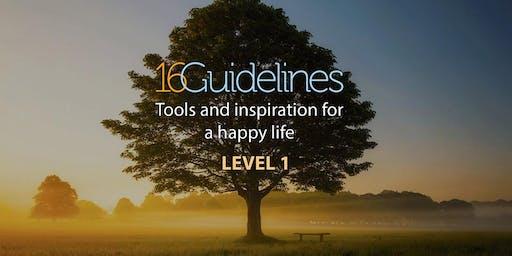16 Leidraden voor een Gelukkig  Leven Workshop