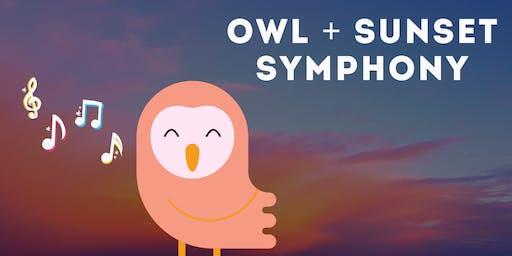 Owl + Sunset Symphony