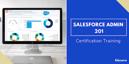 Salesforce Admin 201 & App Builder Certification Training in Pine Bluff, AR