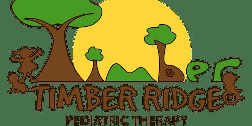 Timber Ridge Therapy Sensory Open Play