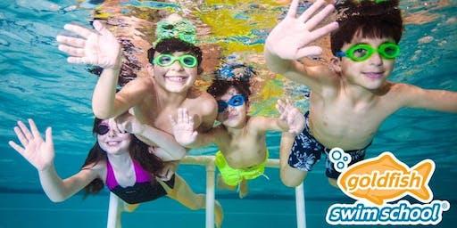 Open Swim at Goldfish Okemos--Holiday Break Fun!