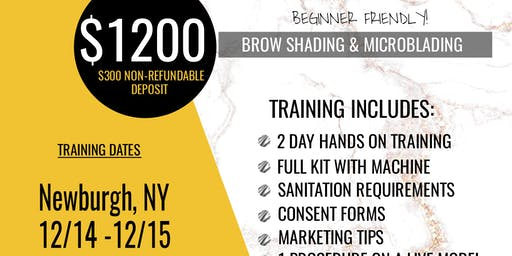 Girl Boss 101: Microblading & Shading (Newburgh, NY)