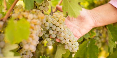 Viticulture and Oenology : Research to Practise Workshop tickets