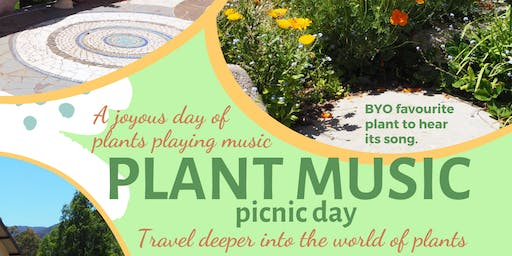 Plant Music Picnic Day Warburton Dec 7 2019
