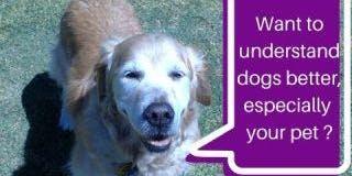 Learn to speak Woof
