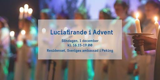Luciafirande i Advent