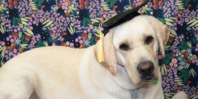 2019 Guide Dogs Tasmania Graduation Ceremony