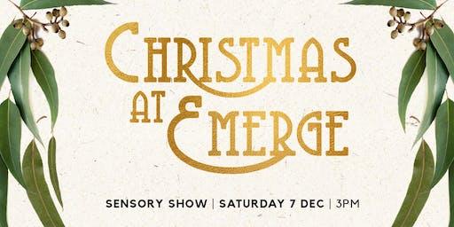 Christmas at Emerge Sensory Show