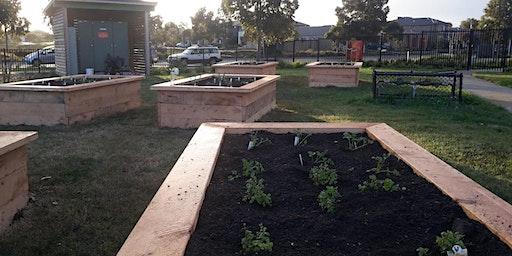 MMeets—CERES presents 'Kitchen Garden Workshop'