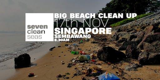 Big Beach Cleanup - Singapore NOVEMBER