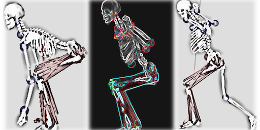 Motion Analysis in Biomechanics - Sport and Exercise Science