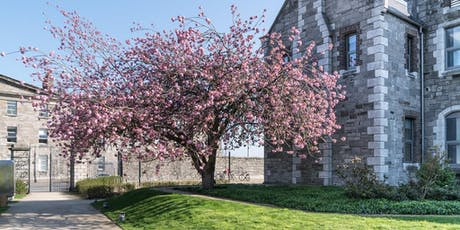 Walking Tour of Grangegorman with Dublin Decoded tickets