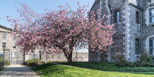 Walking Tour of Grangegorman with Dublin Decoded