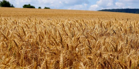 Farming with Nature: improving agro-biodiversity in arable production tickets