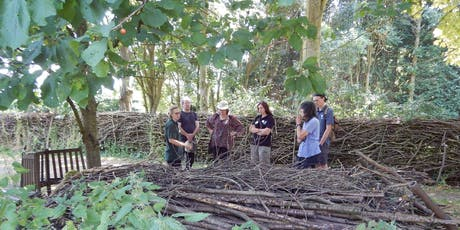 Hedgehog Ecology and Management for Practitioners training course tickets