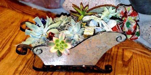 Sips and Succulents Holiday Fun!