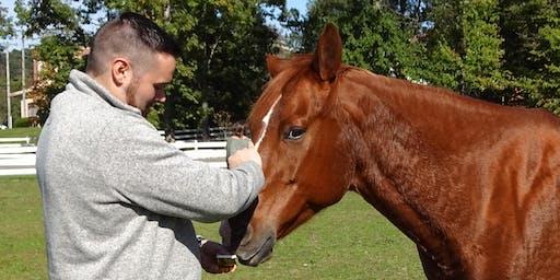 Equine Assisted Wellness Workshops