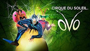 """""""Cirque du Soleil""""'s OVO"""