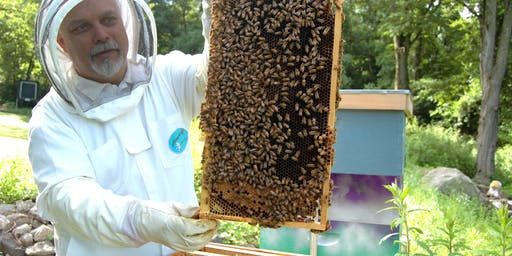 Apprentice Beekeeping Workshop