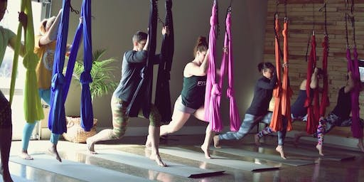 Beginner Aerial Yoga Workshop