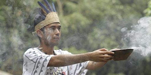 Sacred Plant Healing Shamanic Traditional Ceremony