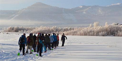 Swaner Preserve Nature Walk/Snowshoe 2020