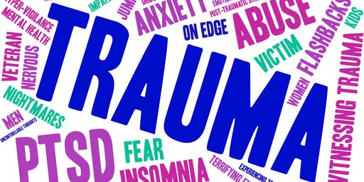 Trauma Informed Care 101 and Toxic Stress Reduction