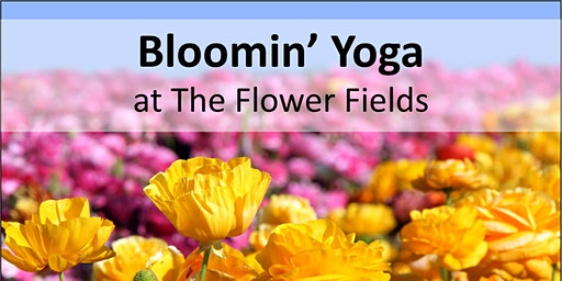 Bloomin' Yoga at The Flower Fields