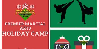 "Holiday ""Advance a Belt"" Camp"