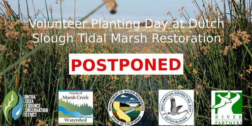 POSTPONED - Volunteer Planting at Dutch Slough Tidal Marsh Restoration