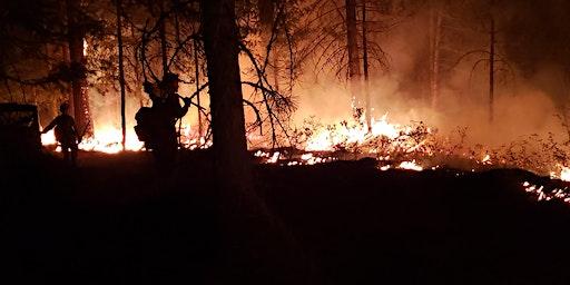 S-212 Wildland Fire Chainsaws (NWCG)